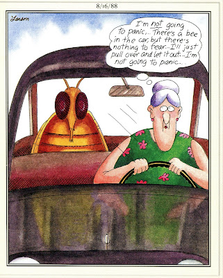 BEE in car