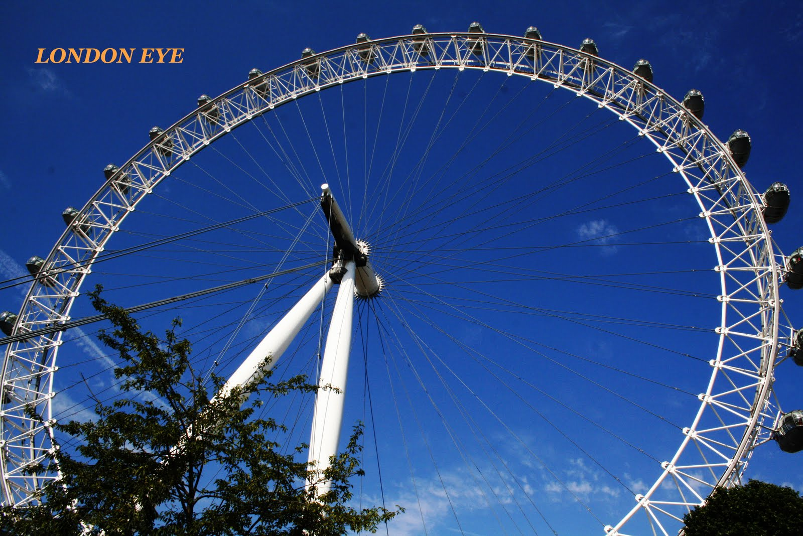 Cucina Restaurant London Eye Food And The City Londra
