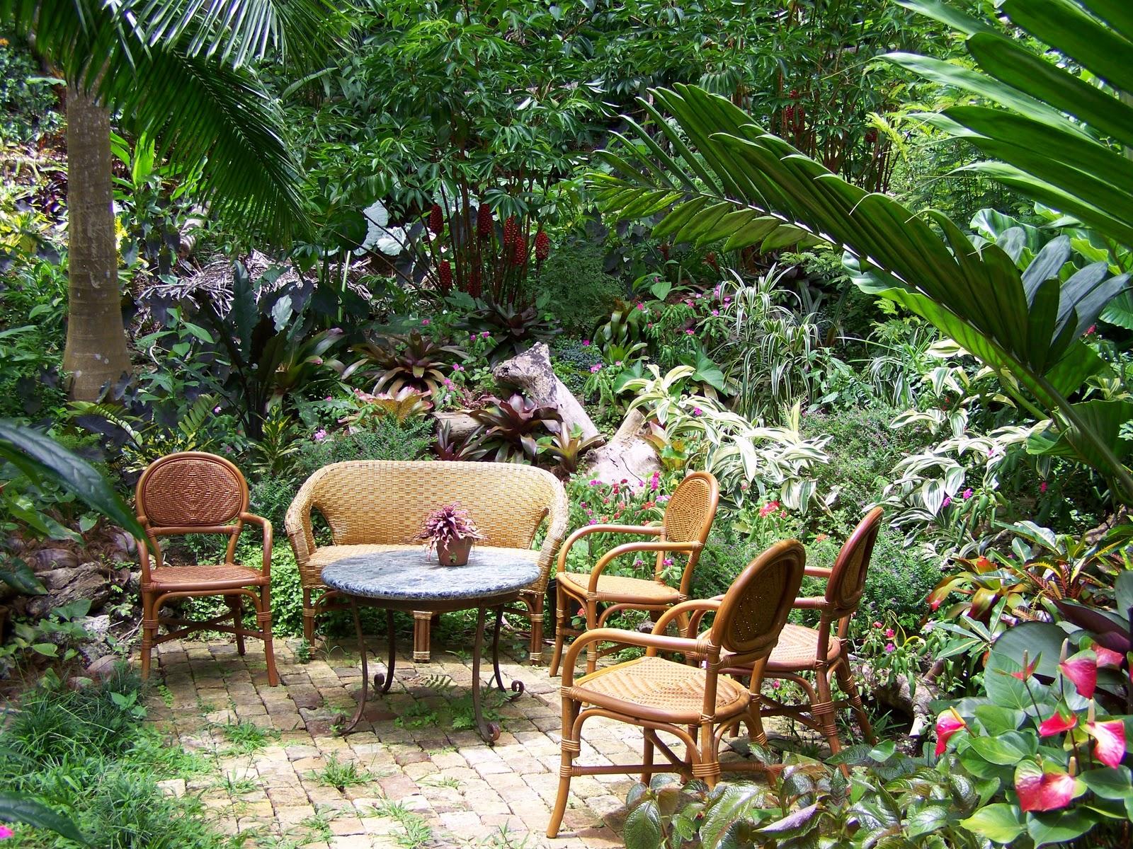 Paradis express my rustic bajan garden for Petit jardin sympa