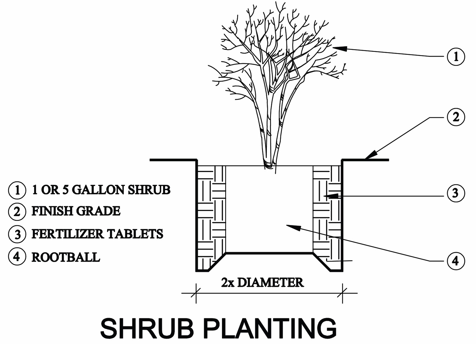 Earth Friendly Landscapes How To Plant A Plant