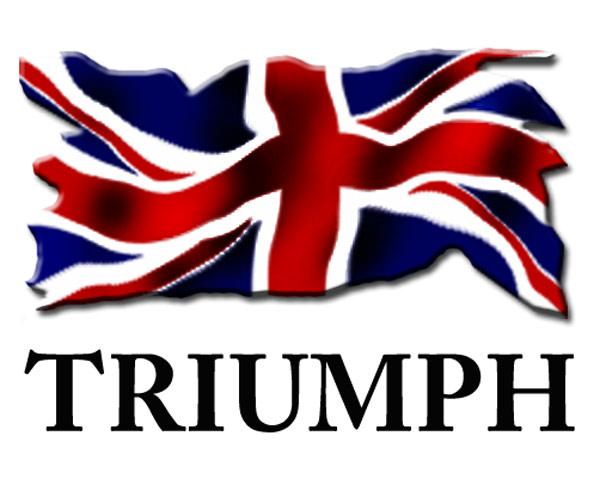 Q3: triumph logo