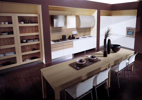 Cabinets for kitchen kitchen cabinets design for - Professional home kitchen design ...