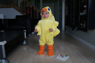 Test run of the chocobo costume. V was not happy with the hood. This unhappiness was nowhere to be found at the convention when she was  sc 1 th 183 & Conroyu0027s Baby Blog
