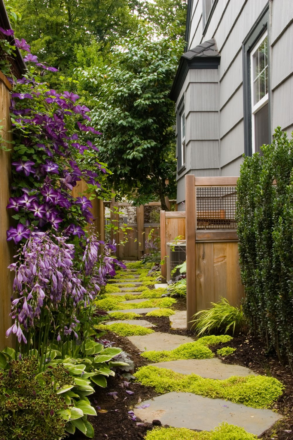 Making Macy: Dilemma in Landscaping: Narrow Side Yards on Narrow Backyard Landscaping Ideas  id=50108