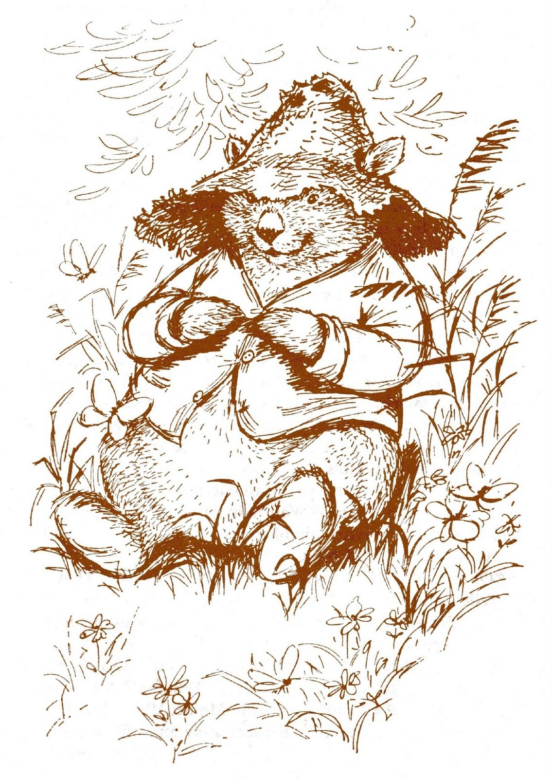 the adventures of the muddle-headed wombat by Ruth Park, illustrated ...