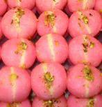 Black Forest Rasgulla Cake Masterchef India Recipe