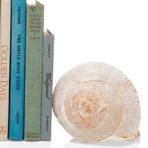 shell book ends