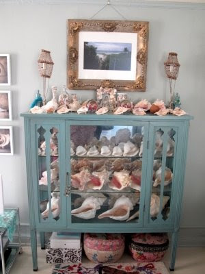 glass cabinet with shells