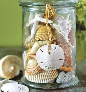 Decorate Jar with sand dollar
