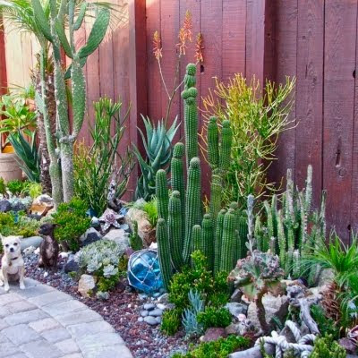 Coastal Landscaping Ideas