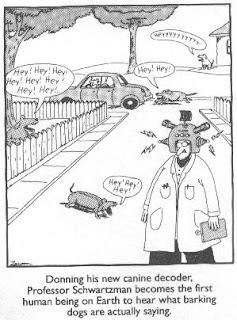 Stuff I Look Up: 10 Best Far Side Cartoons