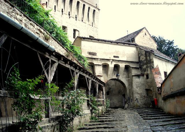 the old Sighisoara fort