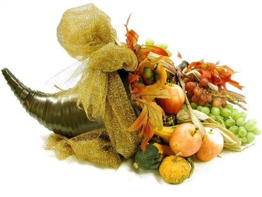 Cornucopia Pet Foods Reviews
