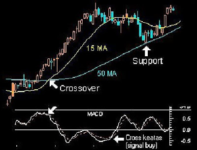 Best ma settings for forex