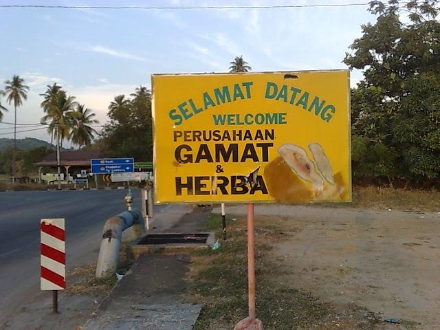 Gamat Asli Langkawi