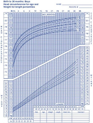 Average Height Of 4 Month Old : average, height, month, Average, Weight, Height, Month, Baby's, Growth:, Months