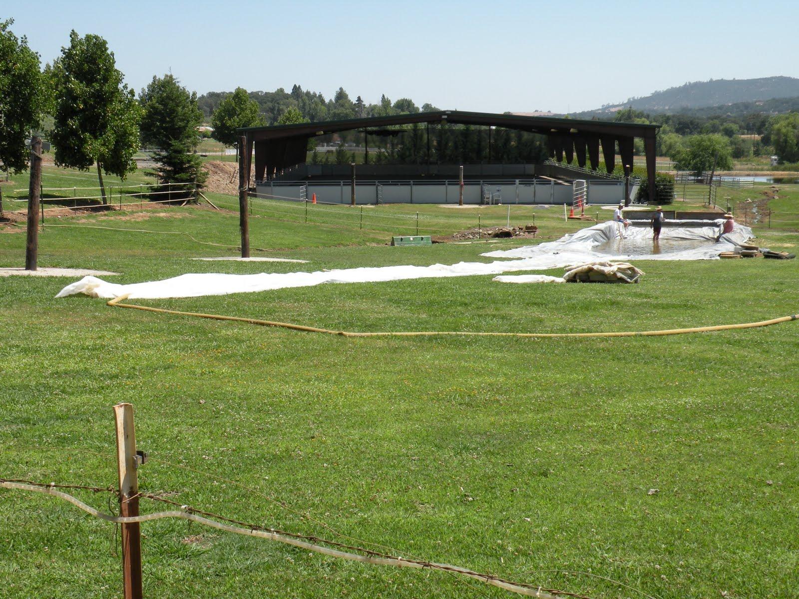 Denisearita Unpaid Ranch Slave Countdown To Slip N Slide