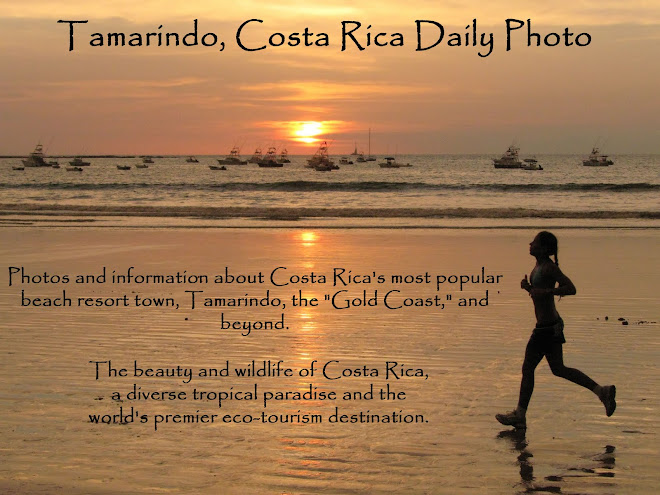 Tamarindo, Costa Rica Daily Photo