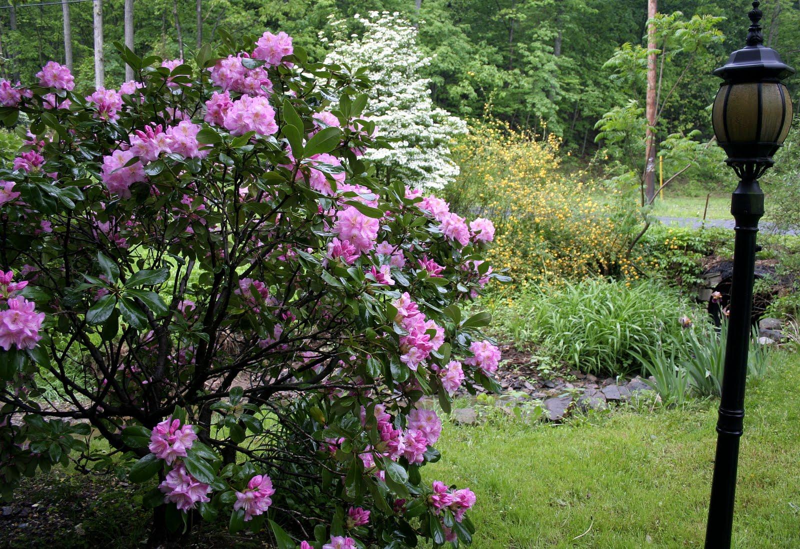 My Secret Garden: Inside My Secret Garden...Day-to-Day Living At Cairnwood