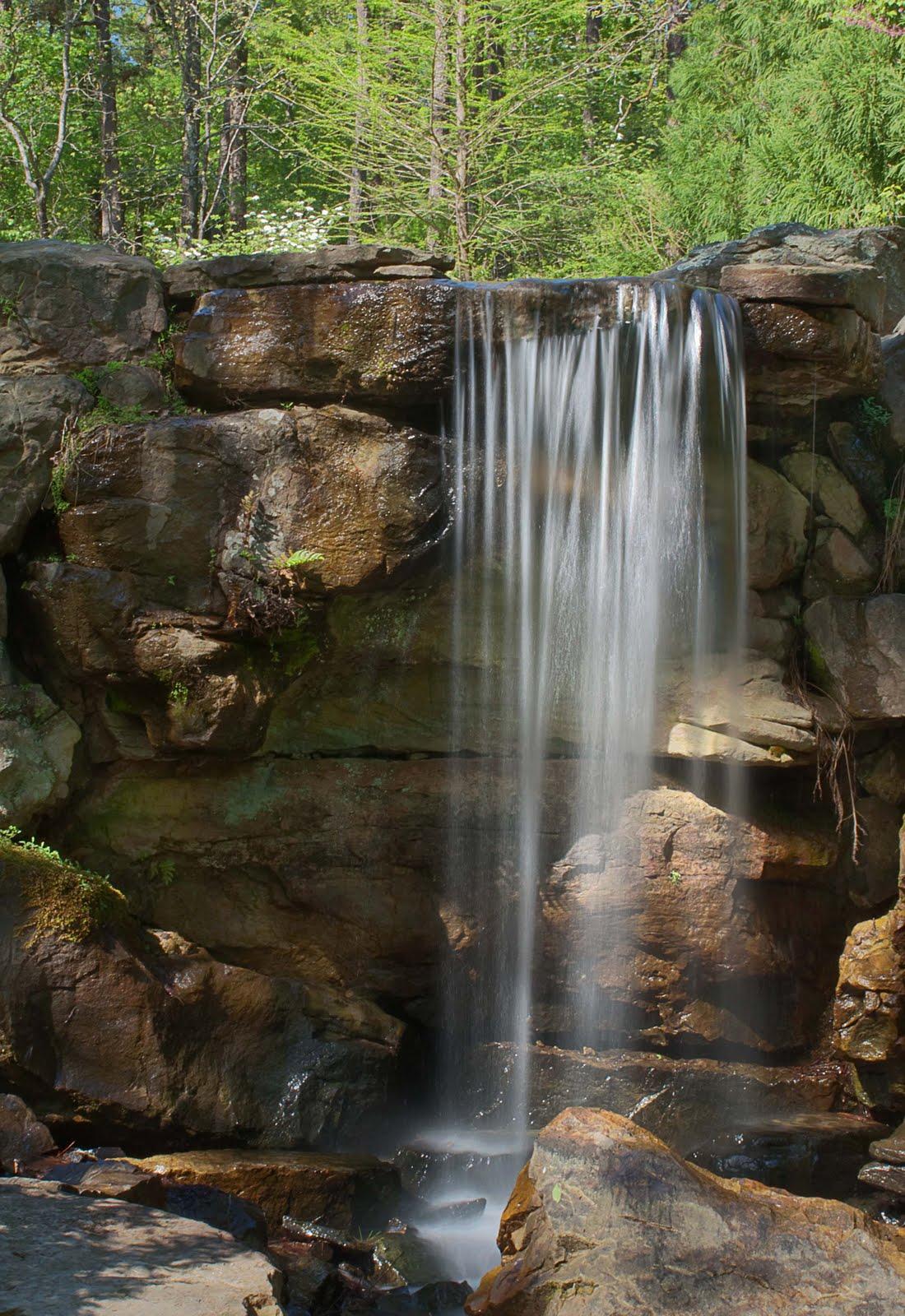 Waterfall hunting 4 11 garvan gardens in hot springs for Koi pond waterfall
