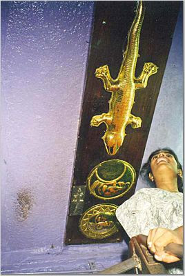 Indian Temples & Iconography: A call to the Lizard