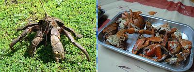 Solomon Islands Food 2