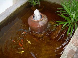 seni jari ikhlas: kolam ikan, air terjun, bonsai, lanskap