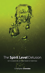 the spirit level delusion