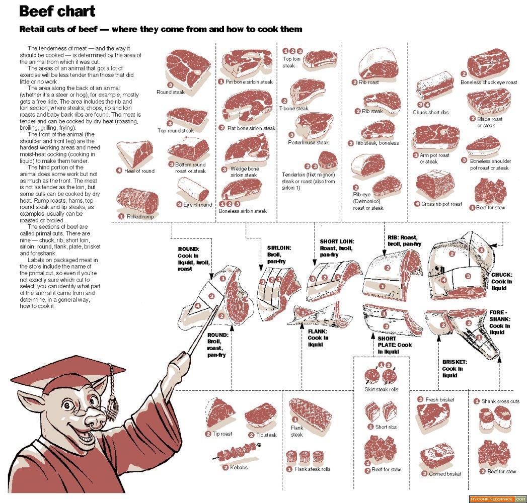 retail cuts of pork diagram retrospective caveman quick guide to different cuts of beef [ 1047 x 1000 Pixel ]