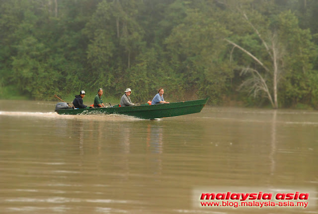 Photo of Kinabatangan River Cruise