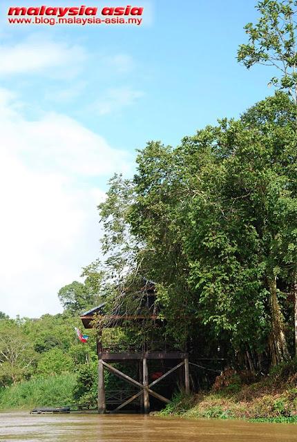 Kinabatangan River Proboscis Lodge
