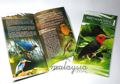 Brochure for Borneo Bird Festival