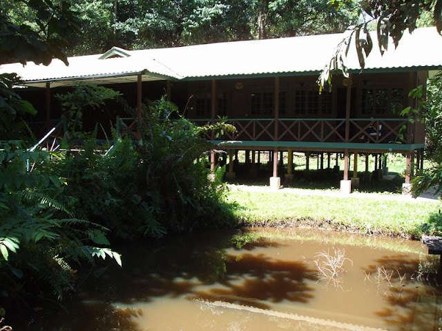 Longhouse dorm Mulu National Park