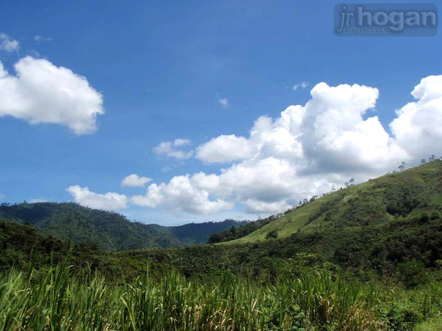 Photo of Tenom
