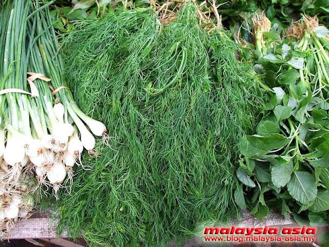 Fresh herbs in Luang Prabang