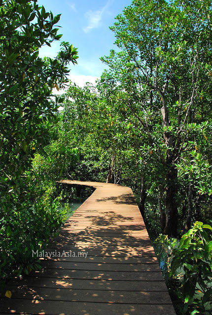 Krabi Nature Trails
