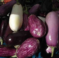 Varieties of Eggplant courtesy of Morguefile