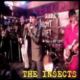Live Insects on the Night Shift TV Show
