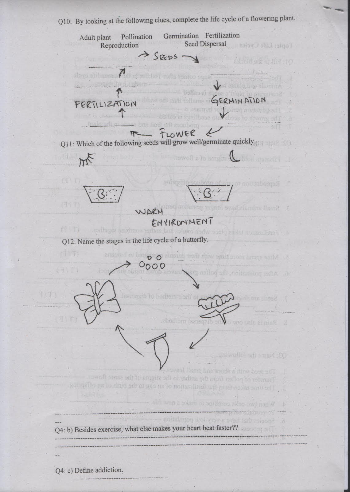 The City School Paf Chapter Jr C Section Science Worksheets 2