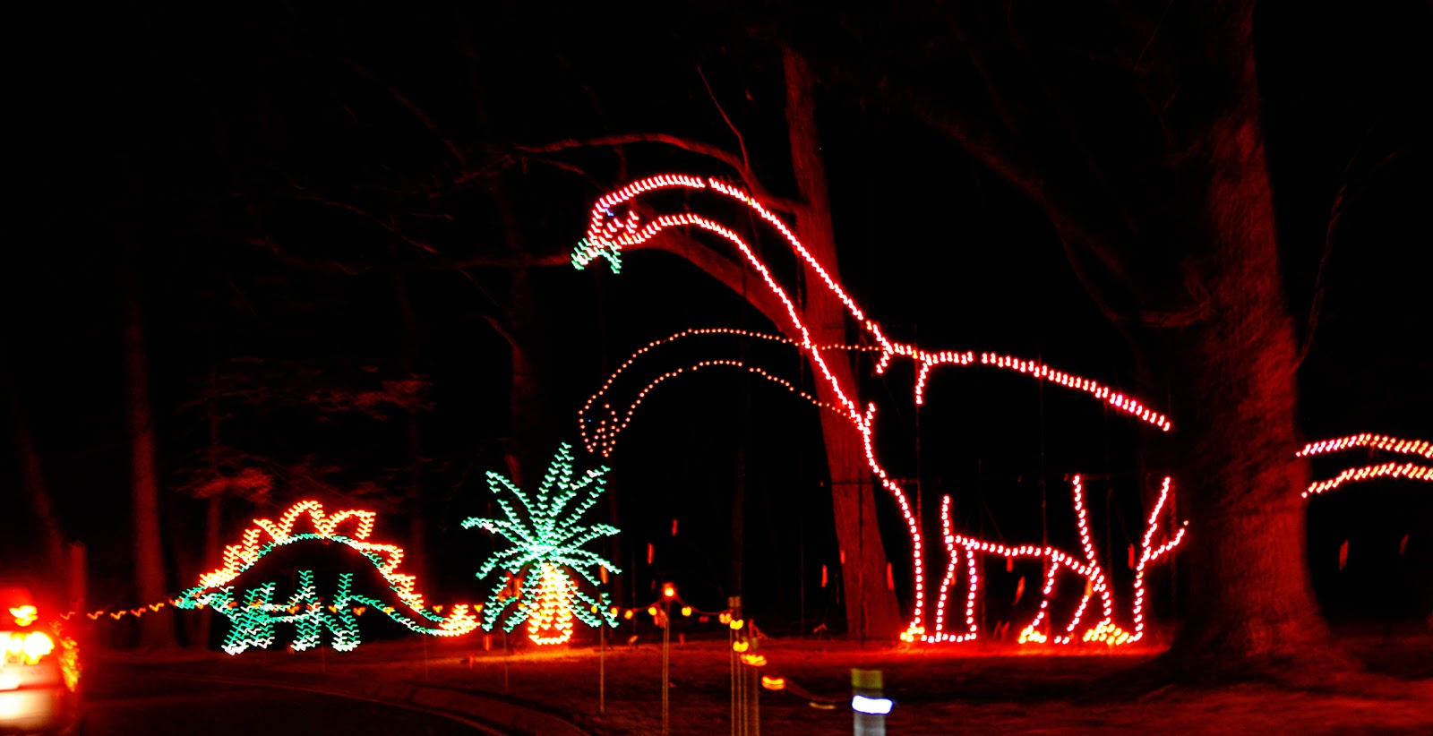 My Atheist Aunt And Uncles Christmas Lights Atheism