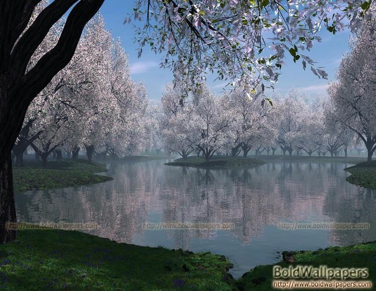 Jugnoo Most Nice Nature Pic
