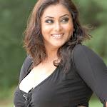 Namitha Hot Sexy Billa Hq Wallpapers 1