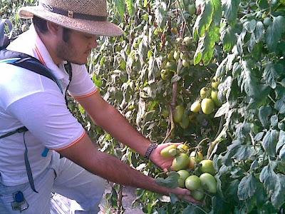 Conceitos Básicos de Agroecologia