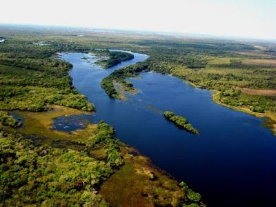 Governo de Rondônia Extingue Seis Unidades de Conservação