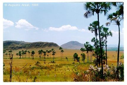 Parque Nacional das Emas | Goiás