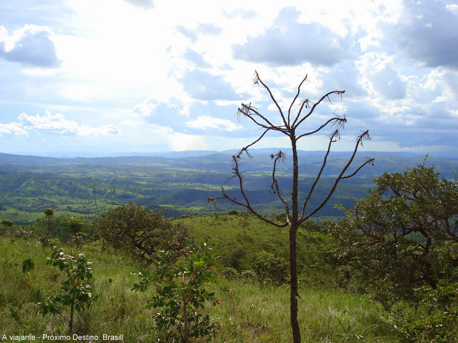 Parque Nacional das Emas   Goiás