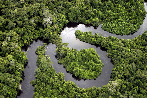Rio Renato, afluente do Rio Teles-Pires