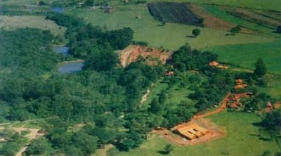 Floresta Estadual de Assis