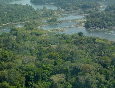 Estação Ecológica do Rio Roosevelt | Mato Grosso