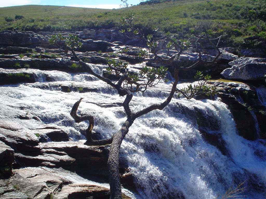 Parque Nacional da Serra da Canastra | Minas Gerais